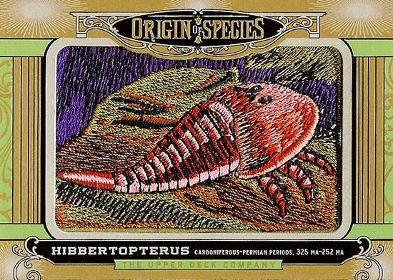 2014-Goodwin-Champions-Origins-Of-Species-Hibbertopterus