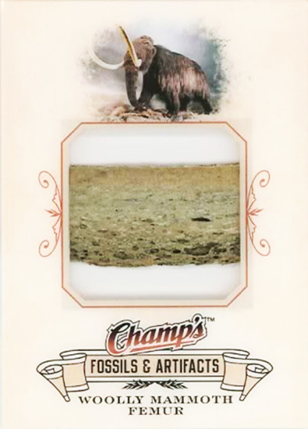 2008-09-Upper-Deck-Champs-NHL-Fossil-Wooly-Mammoth-Femur