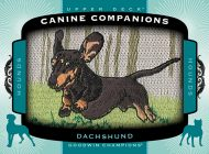 Upper Deck's 2017 Goodwin Champions Brand Goes to the Dogs with New Canine Companion Patch Cards