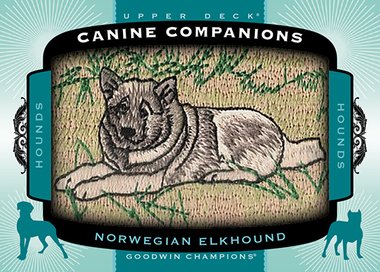 2017-Goodwin-Champions-Canine-Companions-CC85-Norwegian-Elkhound