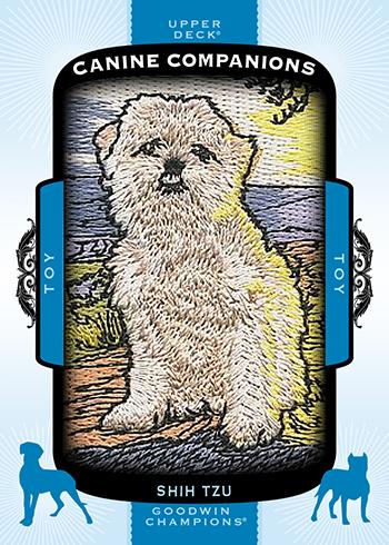 2017-Goodwin-Champions-Canine-Companions-CC96-Shih-Tzu