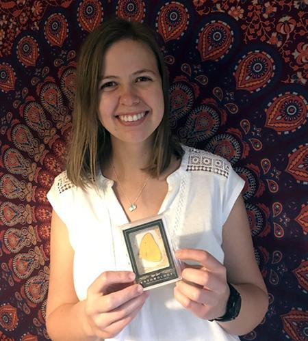 Goodwin-Champions-Entomology-apricot-sulphur-trading-card-gift-upper-deck-christmas-2
